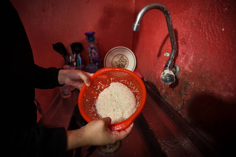 Indústria da ração compra mais arroz, e consumidor deve sentir alta de preço