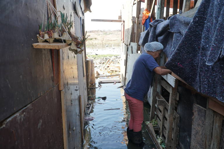 Moradora cuida de chiqueiro de porcos em meio a viela alagada em Carapicuíba (SP)