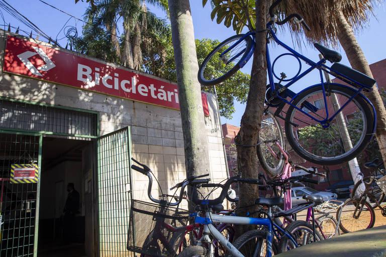 Falta de vaga em bicicletário da CPTM transforma até árvore em paraciclo em SP