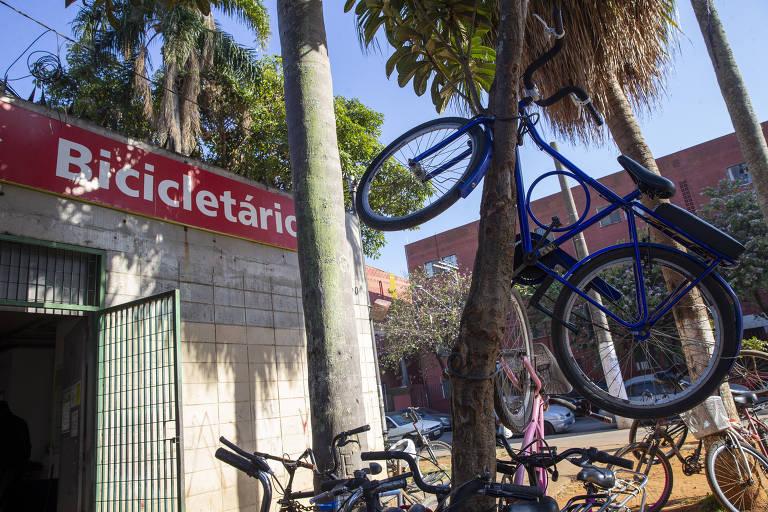 Falta de vaga em bicicletário da CPTM faz até árvore virar paraciclo em SP