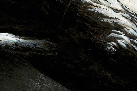 Versão em HQ de 'Moby Dick', ilustrada por Christophe Chabouté