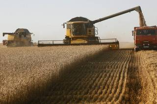 Combine harvesters work on wheat field of Solgonskoye farming company near the village of Talniki southwest from Krasnoyarsk