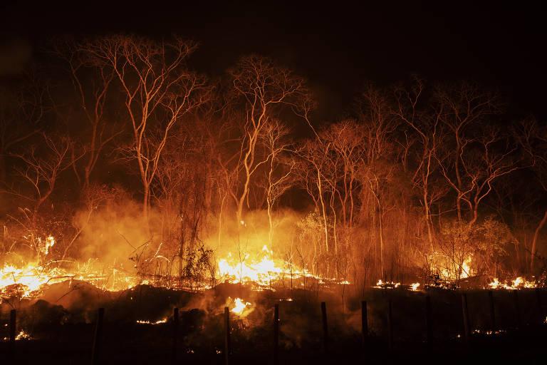 Corumbá pede socorro para enfrentar incêndios no Pantanal