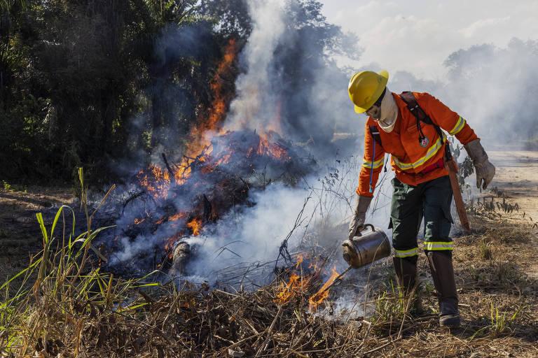 Brigadista fazendo queimada preventiva em área com mata rasteira