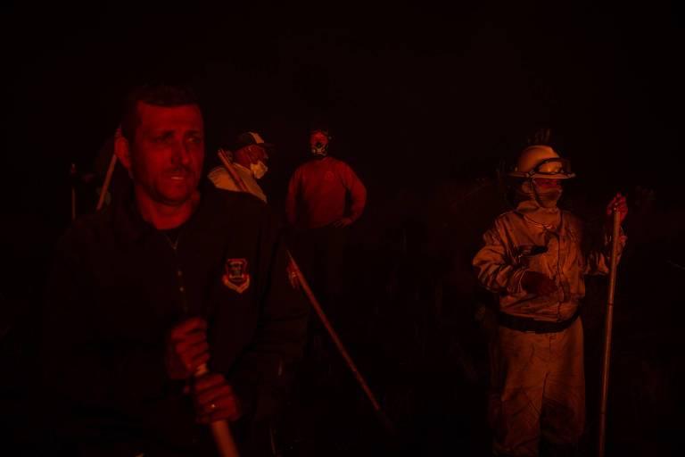 Incêndio atinge parque de cerrado na Grande SP