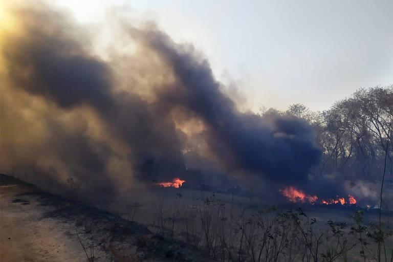 Incêndio no Pantanal ameaça área urbana de Bela Vista (MS)