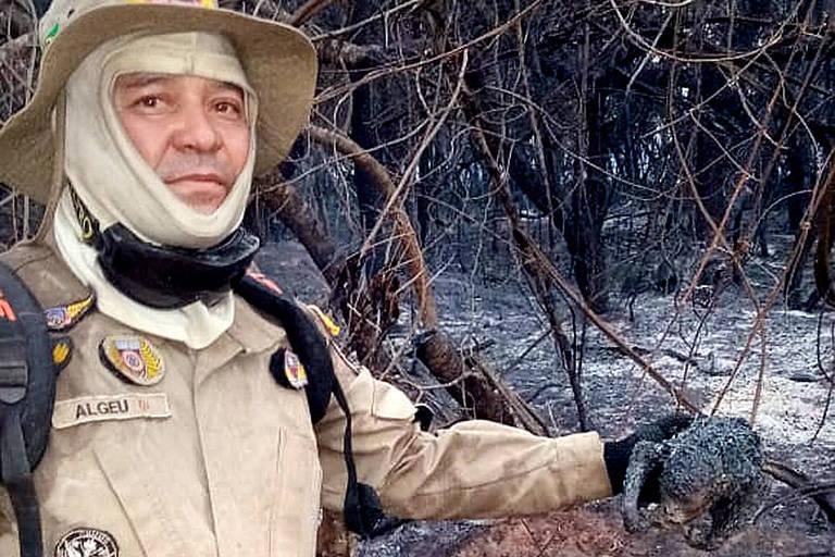 bombeiro com roupa militar segura corpo de animal queimado