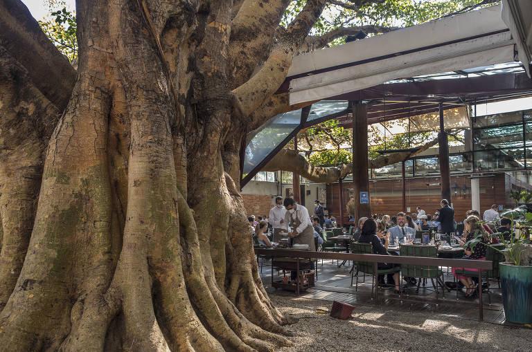 Conheça restaurantes que ficam nos Jardins, em São Paulo