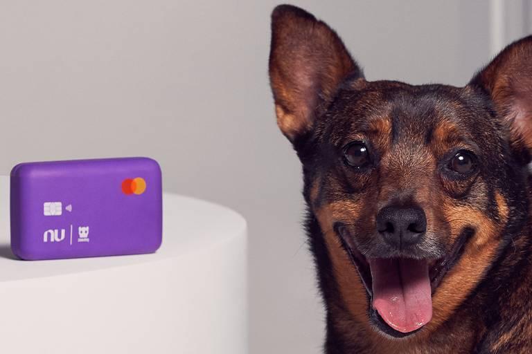 Nubank lança cartão roxo para cães