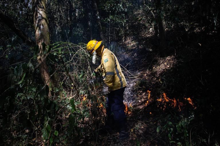 Cidades do interior de SP sofrem com incêndios em áreas de proteção ambiental