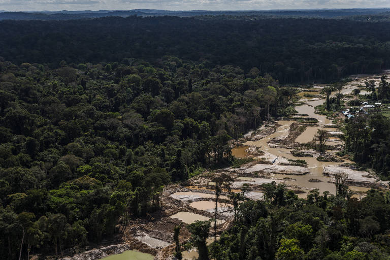 Terras indígenas respondem por somente 1,6% do desmatamento dos últimos 36 anos