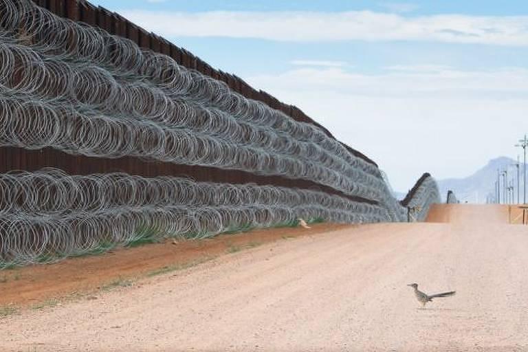 A premiada imagem de 'papa-léguas' diante de muro entre EUA e México