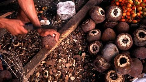 Castanhas extraídas da floresta e à venda em mercado de Belém ORG XMIT: AGEN1011302204387435