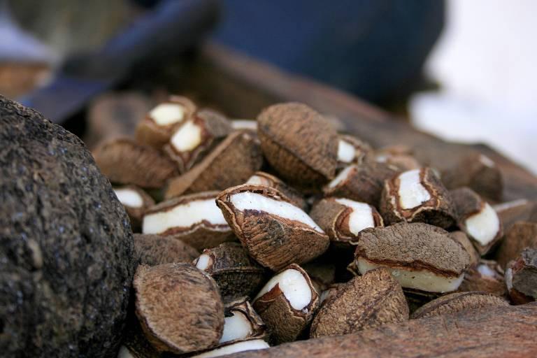 Castanhas extraídas da floresta e à venda em mercado de Belém