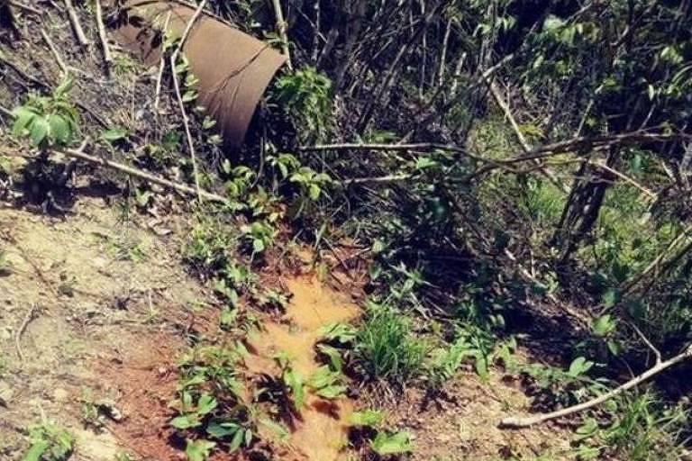 Imagem mostra tubulação derramando água em vegetação