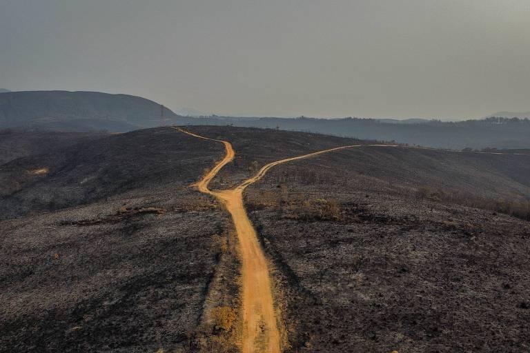 Uma estrada, ao lado da qual há duas áreas de vegetação totalmente queimadas
