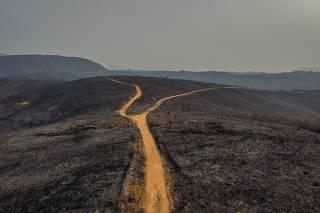 Incêndio atinge o Parque Estadual Juquery, em Franco da Rocha
