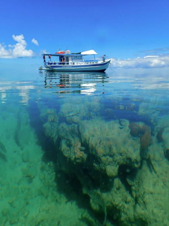 Barco azul e branco flutua sobre corais em mar verde