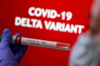 FILE PHOTO: Illustration of a test tube labelled 'COVID-19 Test Positive' in front of displayed words 'COVID-19 Delta variant'