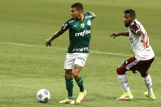 Brasileiro Championship - Palmeiras v Flamengo