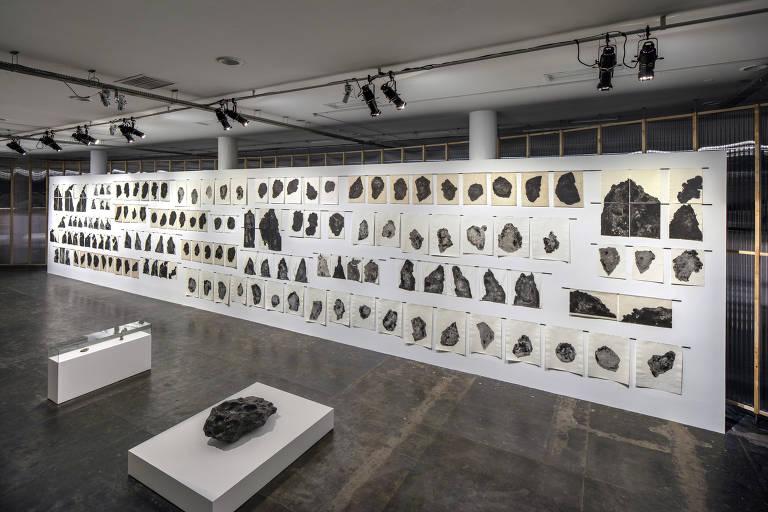 Conheça obras da artista Carmela Gross