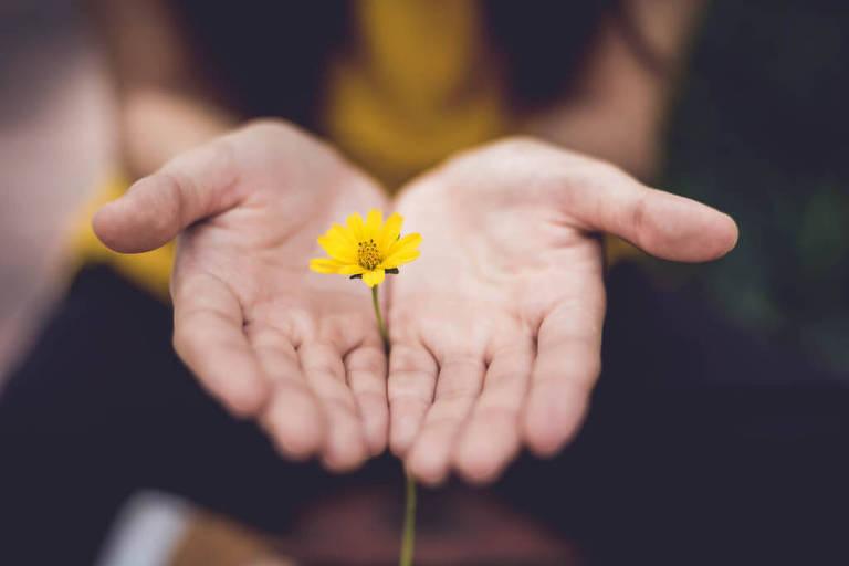 Conheça os benefícios de usar flores na meditação
