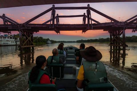 Foto turismo, Jungle Lodge Foto: SAFARI FLUVIAL