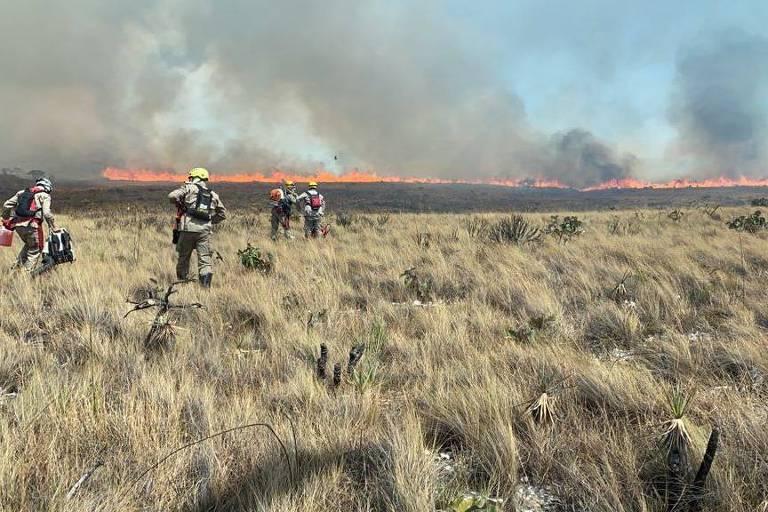 Área está em chamas, enquanto bombeiros tentam controlar o incêndio.