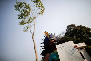 A Jatoba tree, originally from the Amazon, is placed in front of the Norwegian Embassy, during a protest by activists seeking symbolic refugee status for the plant, in Brasilia