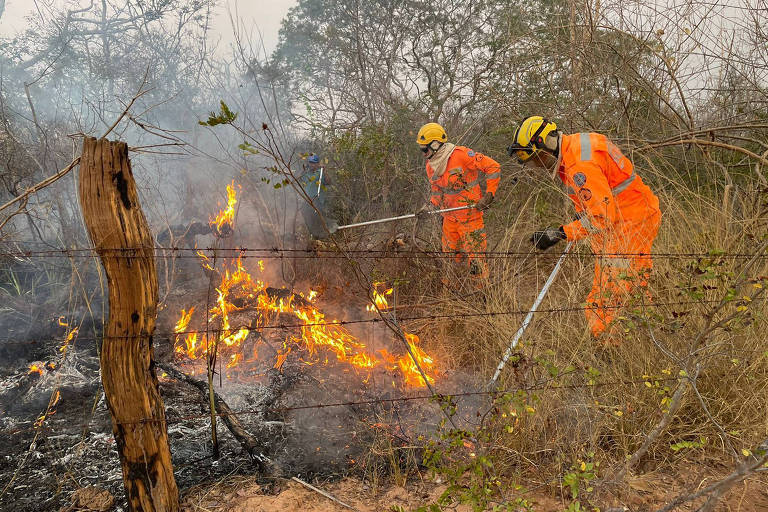Minas tem setembro com maior número de incêndios em dez anos