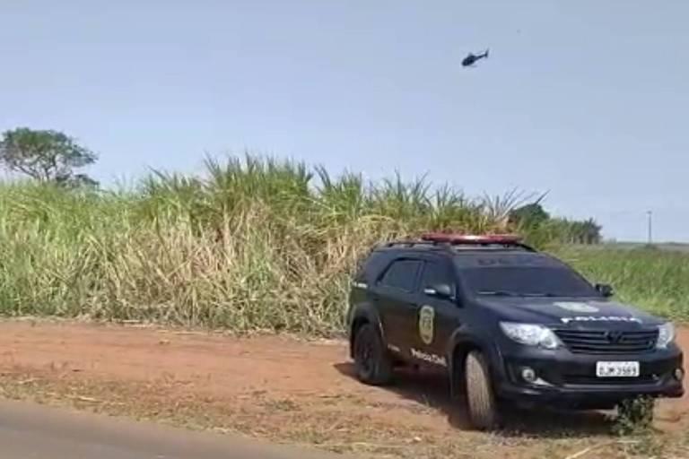Helicópteros da polícia fazem cerco a ladrões de carga em SP; veja vídeo