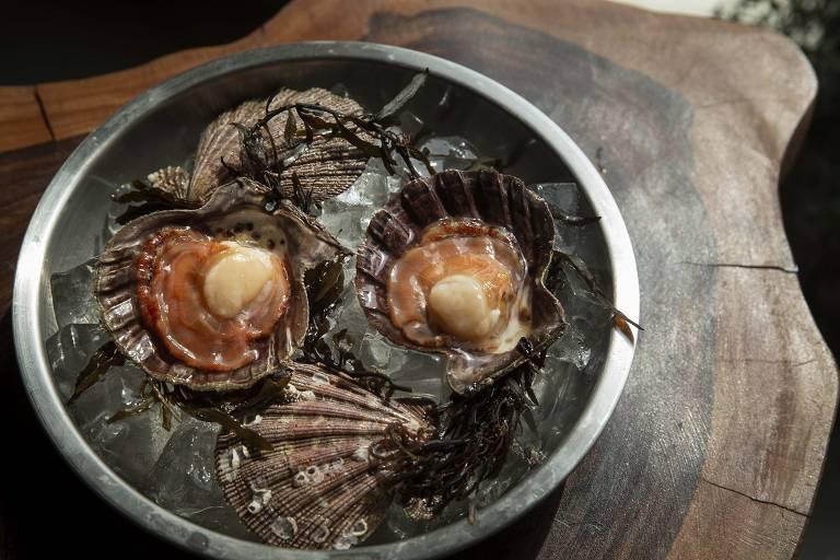 Sem desperdício: alta gastronomia foca no aproveitamento integral dos peixes