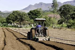 Plantação hortigranjeira na zona rural de Brumadinho, em Minas Gerais