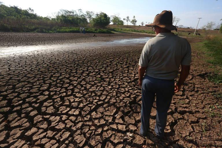 Câmara adia votação da MP da crise hídrica após relator incluir jabutis que encarecem energia