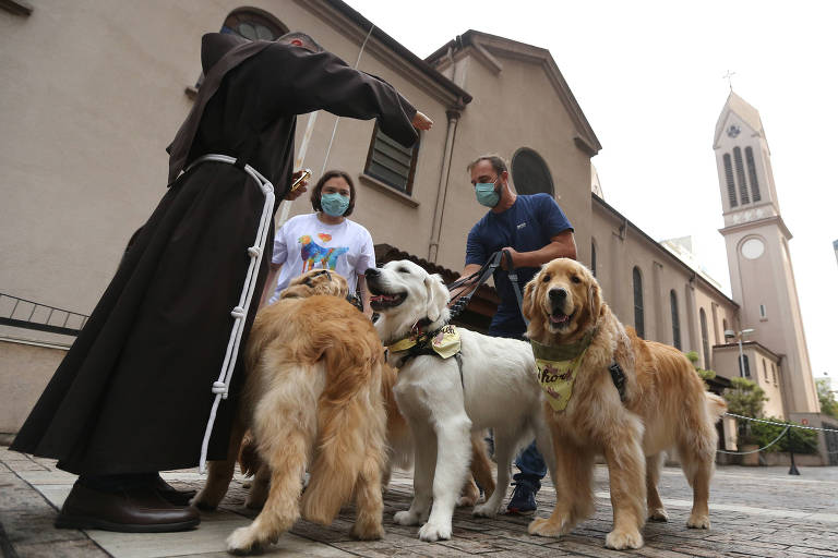 Paulistanos levam pets para bênção no Dia de São Francisco de Assis