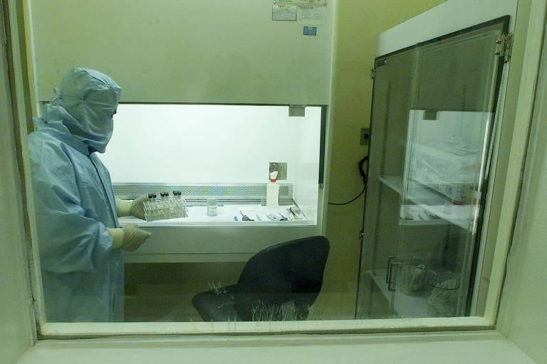 Congresso aprova projeto que libera R$ 63 milhões para produção de remédios contra câncer