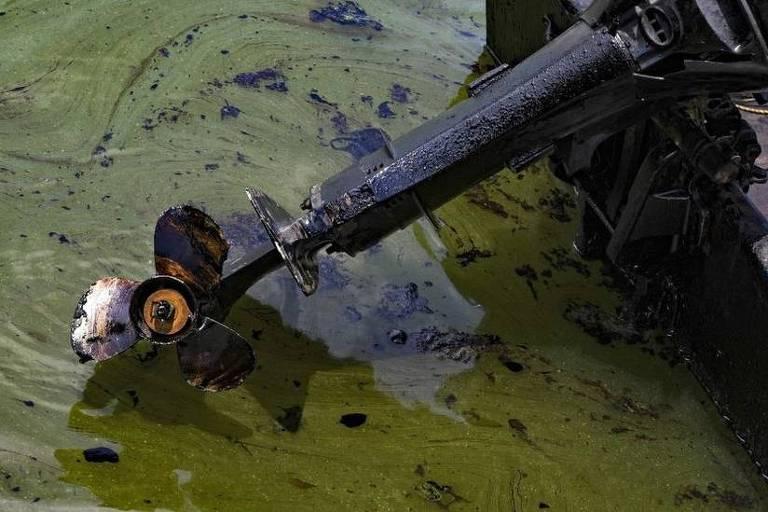 Imagem mostra hélice de um barco suja de uma substância preta. A embarcação está sob um lago em que a água está verde
