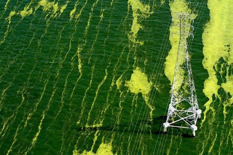 Imagem aérea mostra lago com a água verde