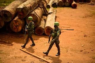 Brazil's military fails to halt Amazon deforestation