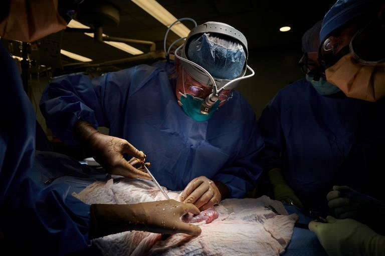 Em uma sala de cirurgia, médicos operam um paciente