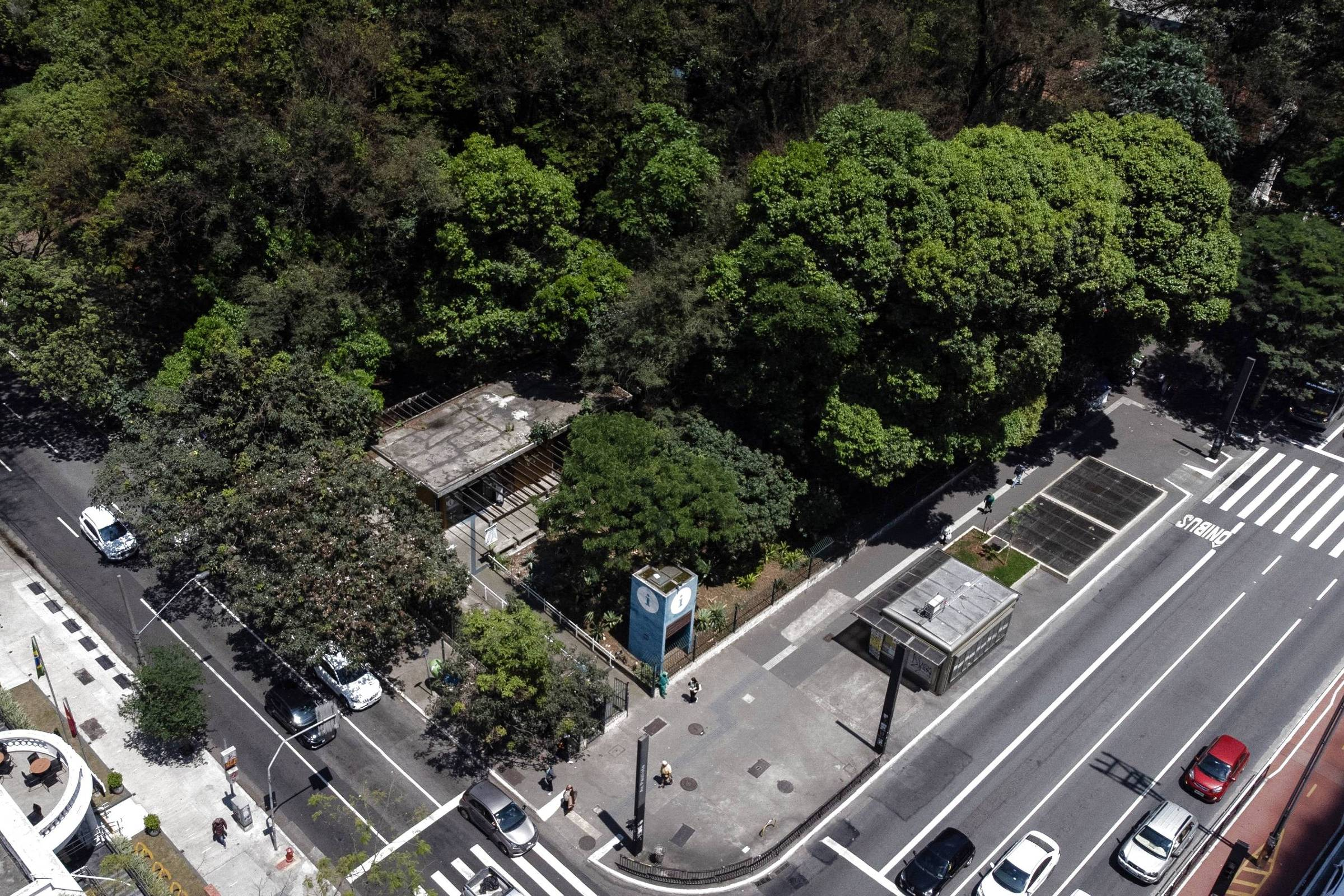 Empresário quer borboleta, 'agroioga' e aula ambiental para transformar parques da Paulista
