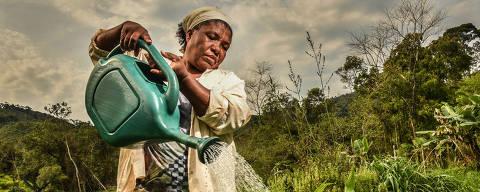 ELDORADO / SÃO PAULO / BRASIL -14 /09/21 - :00h -  Comunidades quilombolas no Vale do Ribeira / Produção sustentável e rede de doação de alimentos das comunidades quilombolas no Vale do Ribeira/ Laudelina de Oliveira, 58, moradora do quilombo São Pedro. ( Foto: Karime Xavier / Folhapress) . ***EXCLUSIVO***Sup. Especiais
