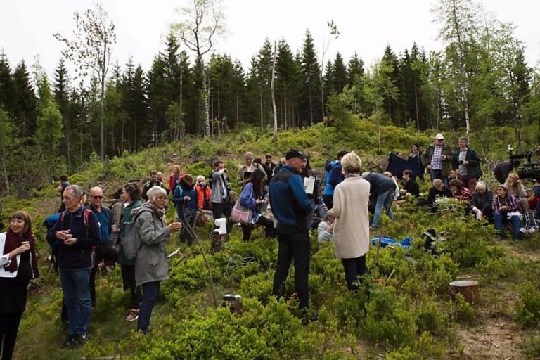 'Biblioteca do Futuro' cresce em floresta de Oslo